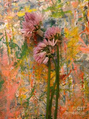 Mixed Media - Flowering Garlic by Nancy Kane Chapman