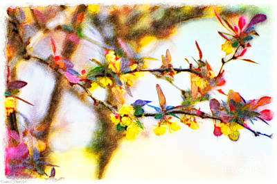 Photograph - Flowering Shrub - Japanese Barberrie - Digital Paint II  by Debbie Portwood