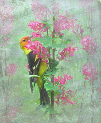 Flowering Tanager Art Print