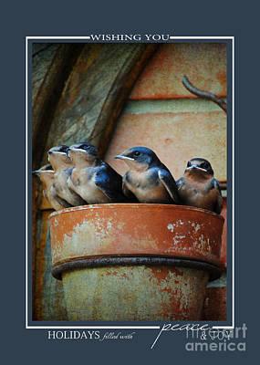 Photograph - Flowerpot Swallows Christmas Cards by Jai Johnson