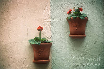Photograph - Flowerpots On The Wall by Inge Riis McDonald