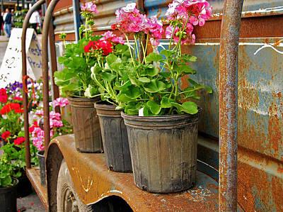 Photograph - Flowers 4 Sale by Deb Buchanan