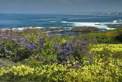 Photograph - Flowers Along The Shore At La Jolla  California No.0202 by Randall Nyhof