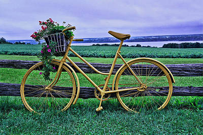 Photograph - Flowers And Bicycle by Allen Beatty