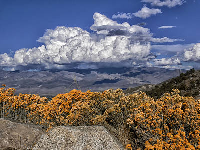 Bath Time - Wildflowers and Clouds by Alan Kepler