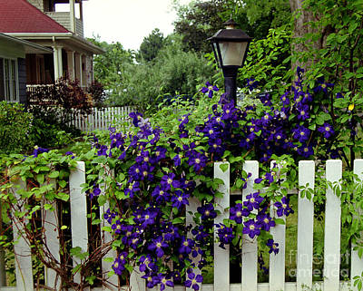 Photograph - Flowers And Fence by Tom Brickhouse