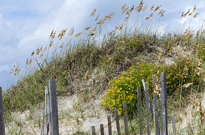 Art Print featuring the photograph Flowers And Sea Oats by Gregg Southard