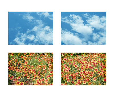 Flowers And Sky Art Print by Ann Powell