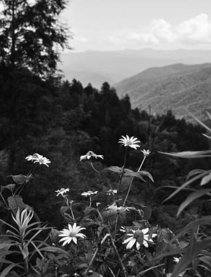 Photograph - Flowers And Vistas by Craig T Burgwardt