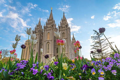 Flowers At Temple Square Art Print
