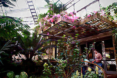 Photograph - Flowers At The Conservatory by Janet Maloy