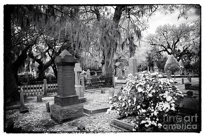 Flowers By The Grave Art Print by John Rizzuto