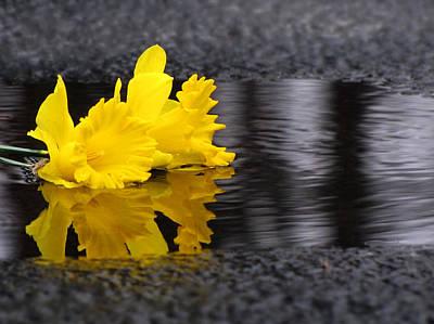 Flowers Come With Rain Art Print by Freda Nichols