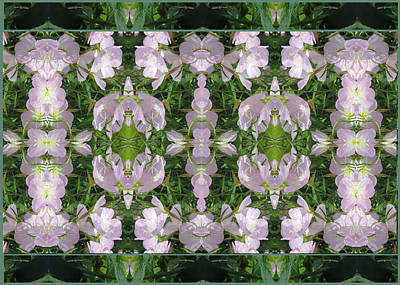 Music Map Photograph - Flowers From Cherryhill Nj America Silken Sparkle Purple Tone Graphically Enhanced Innovative Patter by Navin Joshi