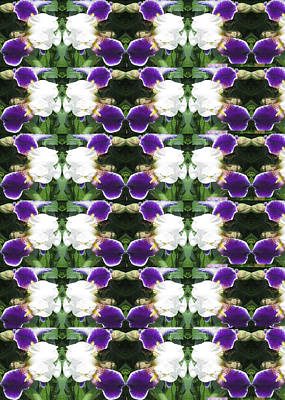 Photograph - Flowers From Cherryhill Nj America White  Purple Combination Graphically Enhanced Innovative Pattern by Navin Joshi