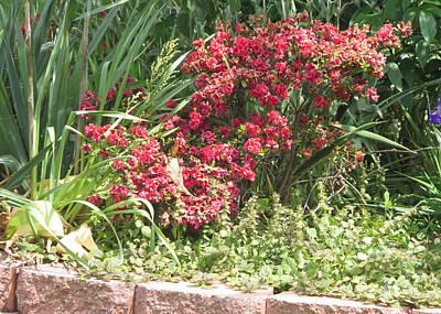 Nature Painting - Flowers Greens Parks And Neighbourhood Cherryhill Nj America          by Navin Joshi