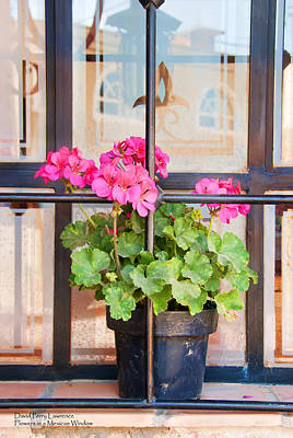 Photograph - Flowers In A Mexican Window - By Travel Photographer David Perry Lawrence by David Perry Lawrence