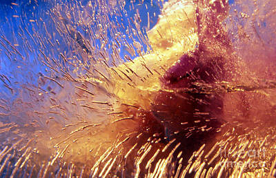 Art Print featuring the photograph Flowers In Ice by Randi Grace Nilsberg