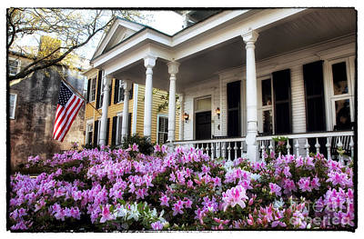 Flowers In The Front Yard Art Print by John Rizzuto