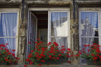 Travel Photograph - Flowers In The Window by Tom Maimran