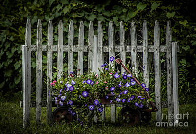 Photograph - Flowers In Wagon by Ronald Grogan