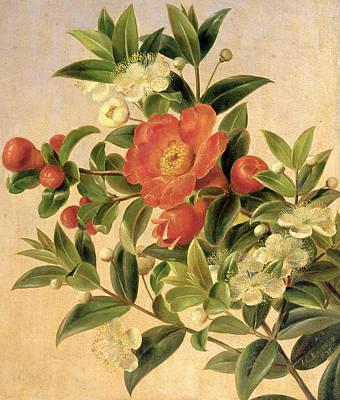 Flowers Art Print by Johan Laurents Jensen