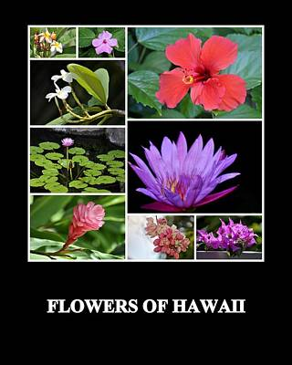 Photograph - Flowers Of Hawaii by AJ  Schibig