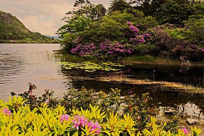 Flowers Of Ireland Lakes Art Print