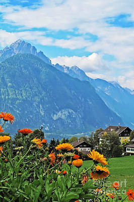 Photograph - Flowers Of The Alps by Elvis Vaughn