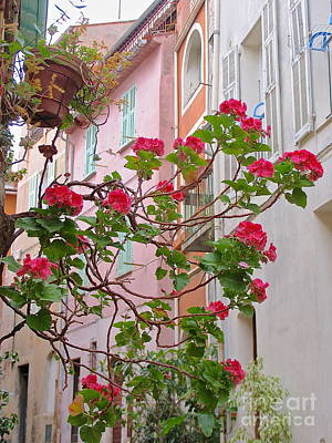 Photograph - Flowers Of Villefranche by Suzanne Oesterling
