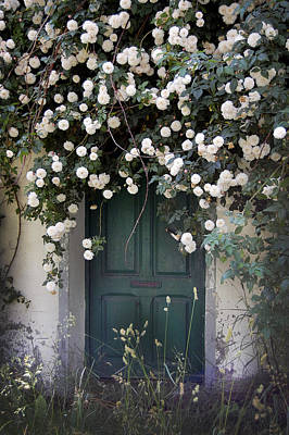 Beauty Photograph - Flowers On The Door by Gina Dsgn