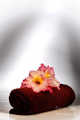 Gladioli Photograph - Flowers On Towel by Olivier Le Queinec