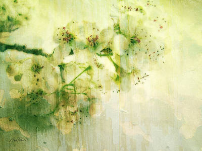 Horizontal Art Mixed Media - Flowers Pear Blossoms Springtime Joy by Ann Powell
