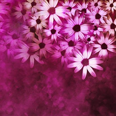 Digital Art - Flowers Pink On Pink by Ann Powell