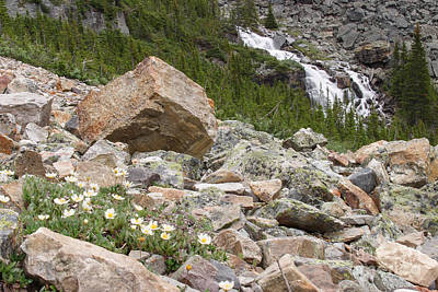 Photograph - Flowers Rocks And Falls by Charles Kozierok
