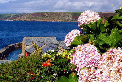 Flowers With A Sea View Art Print by Terri Waters