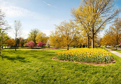 Maryland Photograph - Flowers With Trees At Sherwood Gardens by Panoramic Images