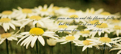 Photograph - Flowers Wither But The Word Of God Endures by MaryJane Armstrong
