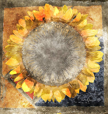 Sunflowers Digital Art - Flowersun - 09279gmn22b3a22 by Variance Collections