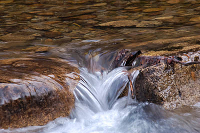 Janet Smith Photograph - Flowing Heart by Janet Smith