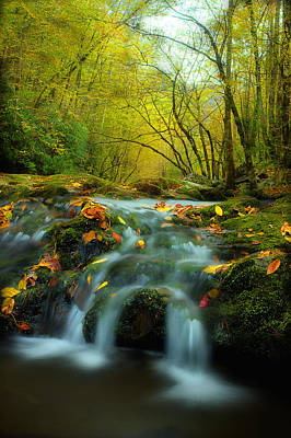 Fall Scenes Photograph - Flowing October by Michael Eingle