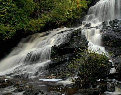 Photograph - Flowing Peace by Tammy Collins