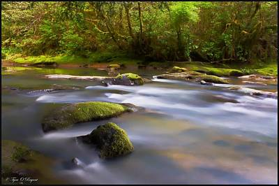 Photograph - Flowing Serenity by Tyra  OBryant
