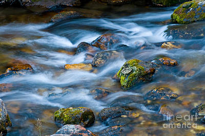 Flowing Stream Art Print by William H. Mullins