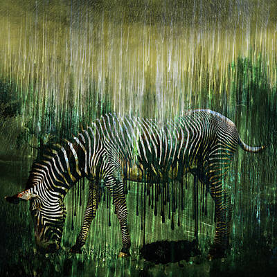 Zoology Digital Art - Flowing Stripes by Marian Voicu