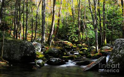 Photograph - Flowing Tranquility by Benanne Stiens