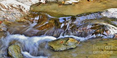 Photograph - Flow'n by Butch Phillips