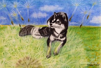 Dog Drawing - Fluff Bed Of Dandelion by Keiko Olds