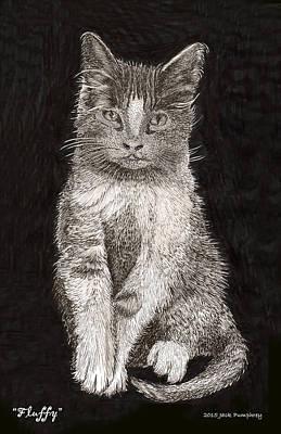 El Gato Del Flufy Art Print