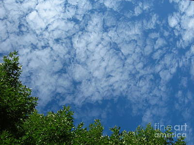 Fluffy Summer Clouds 1 Art Print